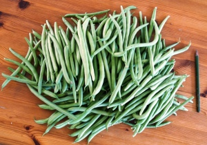 1680g of French Beans